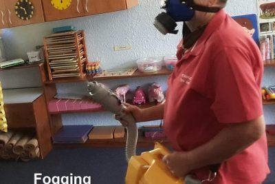 Fogging Service